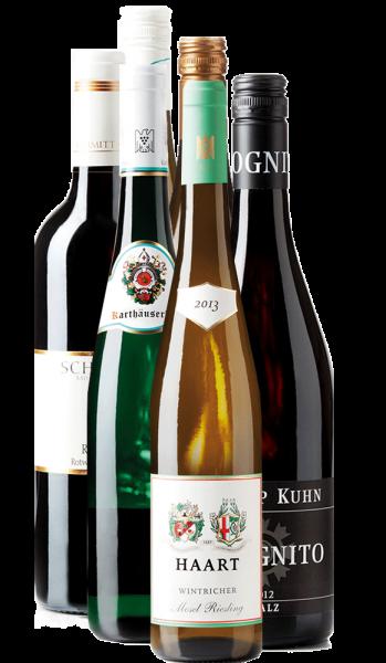 Rot- und Weißwein - 6er Weinpaket