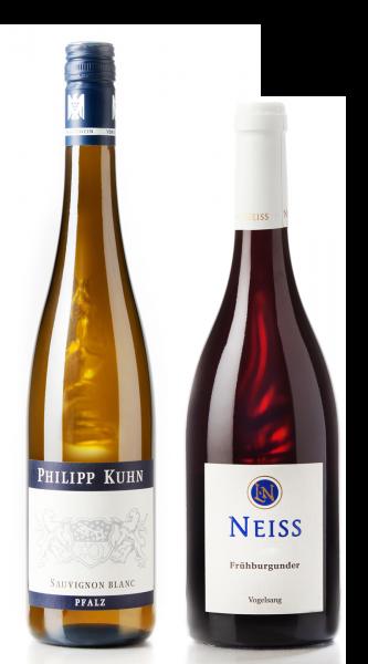 Weingeschenk Pfalz Philipp Kuhn Sauvignon Blanc Axel Neiss Frühburgunder Vogelsang