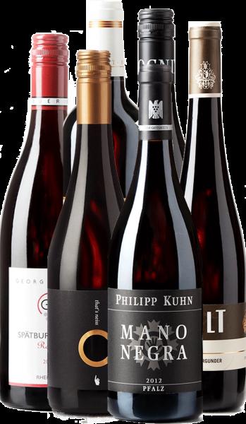 Rotwein - 6er Weinpaket