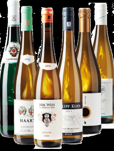 Weißwein - 6er Weinpaket