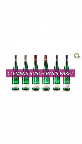Clemens Busch Basis 6er Weinpaket